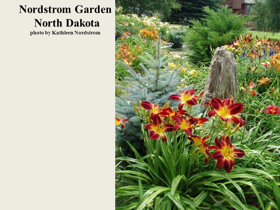 Nordstrom Garden North Dakota photo by Kathleen Nordstrom