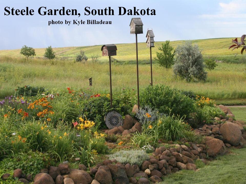 Steele Garden, South Dakota photo by Kyle Billadeau