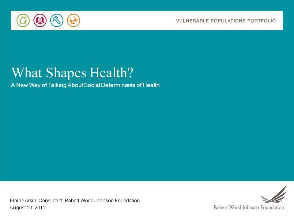 Elaine Arkin, Consultant, Robert Wood Johnson Foundation What Shapes Health.