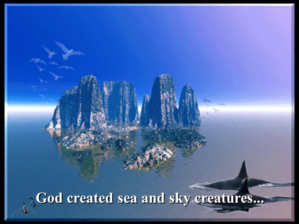 God created sea and sky creatures...