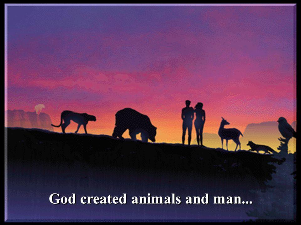 God created animals and man...