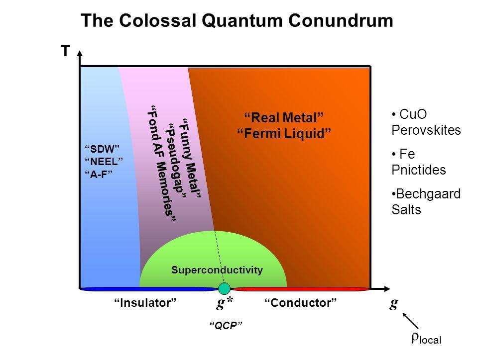 Real Metal Fermi Liquid Funny Metal Pseudogap Fond AF Memories SDW NEEL A-F Superconductivity T g g* QCP InsulatorConductor ρ local Funny Metal Pseudo