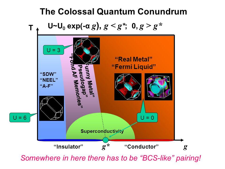 Real Metal Fermi Liquid Funny Metal Pseudogap Fond AF Memories Superconductivity SDW NEEL A-F T g g* InsulatorConductor Funny Metal Pseudogap Fond AF