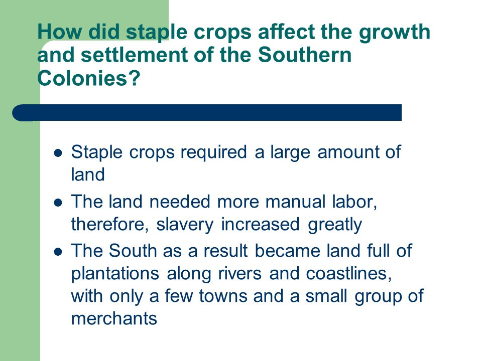 How did staple crops affect the growth and settlement of the Southern Colonies? Staple crops required a large amount of land The land needed more manu