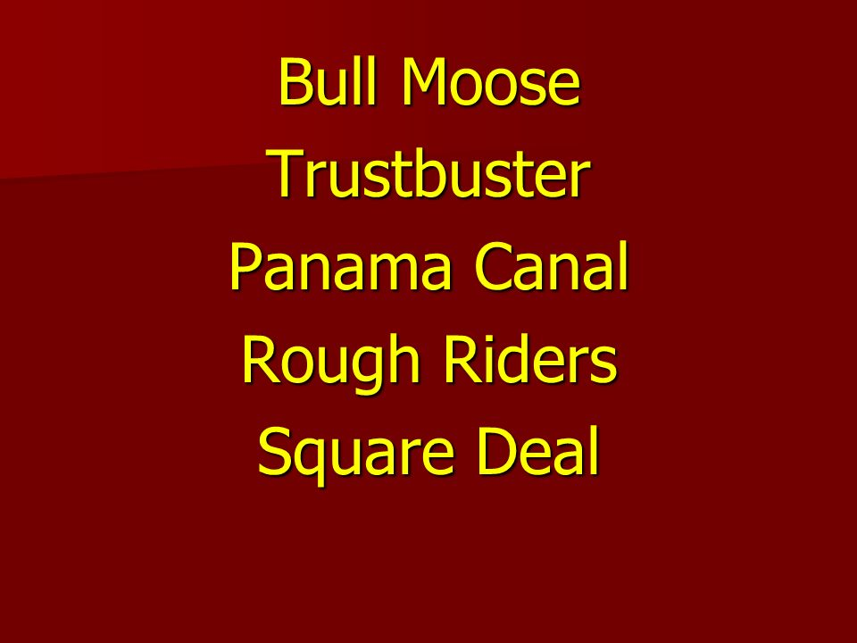 Bull Moose Trustbuster Panama Canal Rough Riders Square Deal