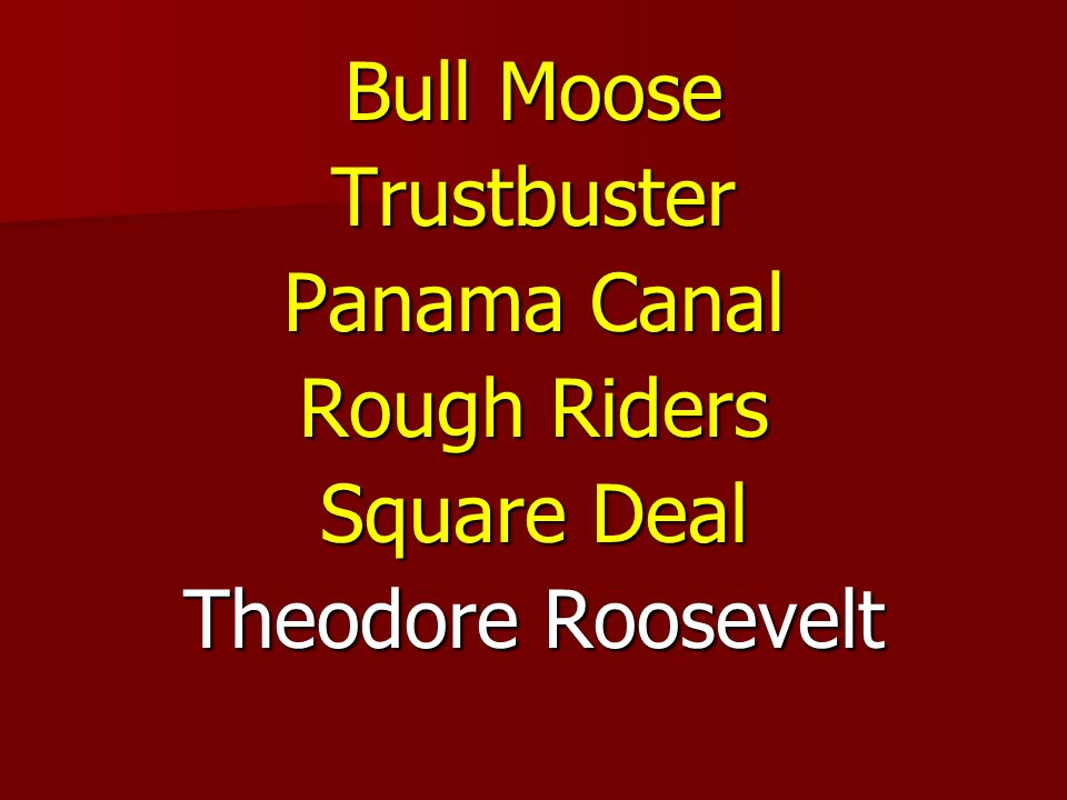 Bull Moose Trustbuster Panama Canal Rough Riders Square Deal Theodore Roosevelt