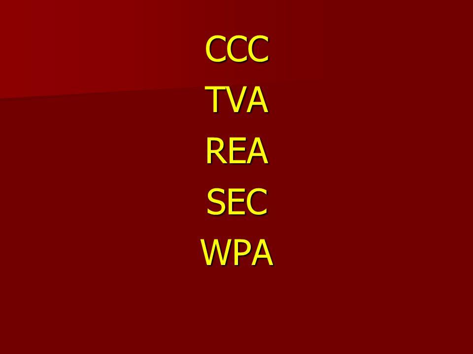 CCCTVAREASECWPA