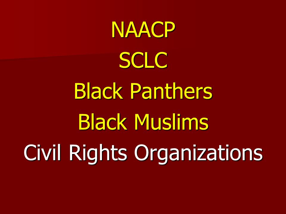 NAACPSCLC Black Panthers Black Muslims Civil Rights Organizations