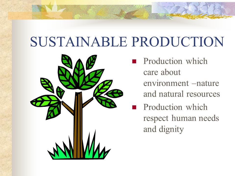 SUSTAINABLE PRODUCTION Production which care about environment –nature and natural resources Production which respect human needs and dignity