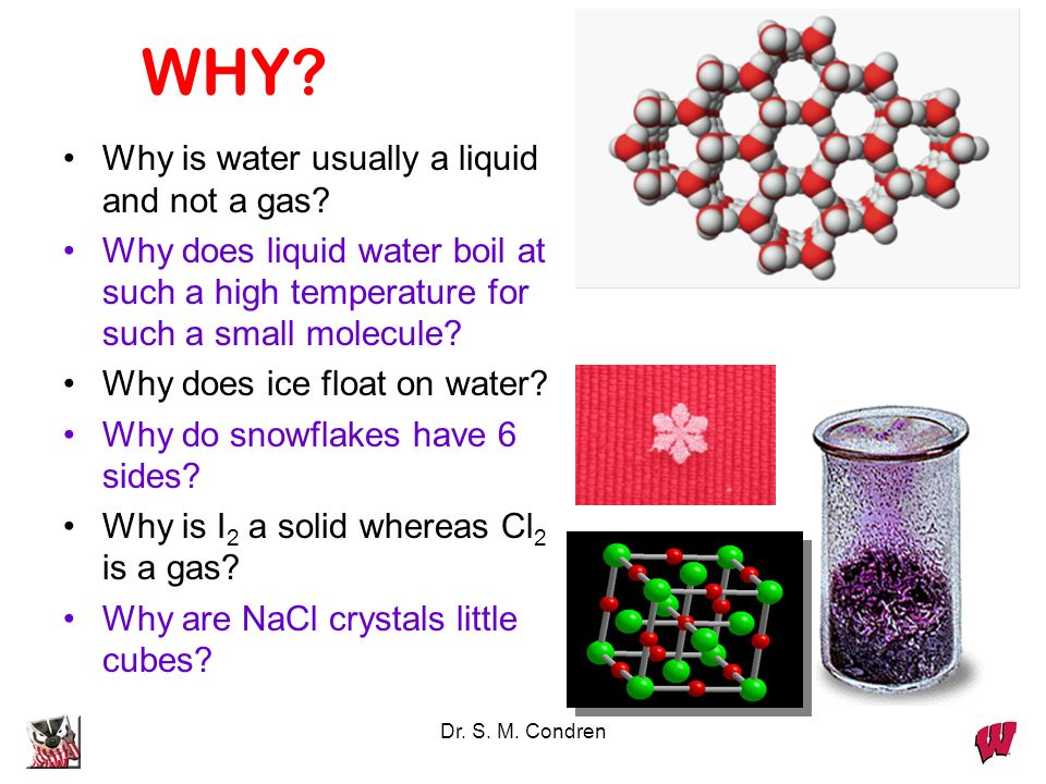Dr. S. M. Condren WHY? Why is water usually a liquid and not a gas? Why does liquid water boil at such a high temperature for such a small molecule? W