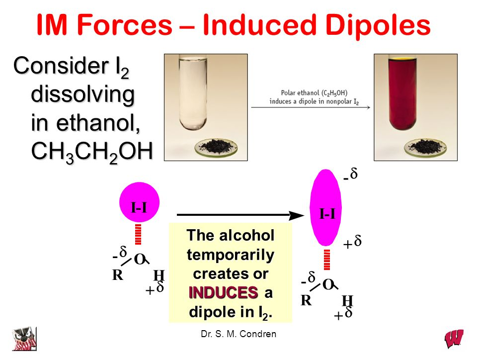 Dr. S. M. Condren Consider I 2 dissolving in ethanol, CH 3 CH 2 OH O H - + I-I R - + O H + - I-I R The alcohol temporarily creates or INDUCES a dipole