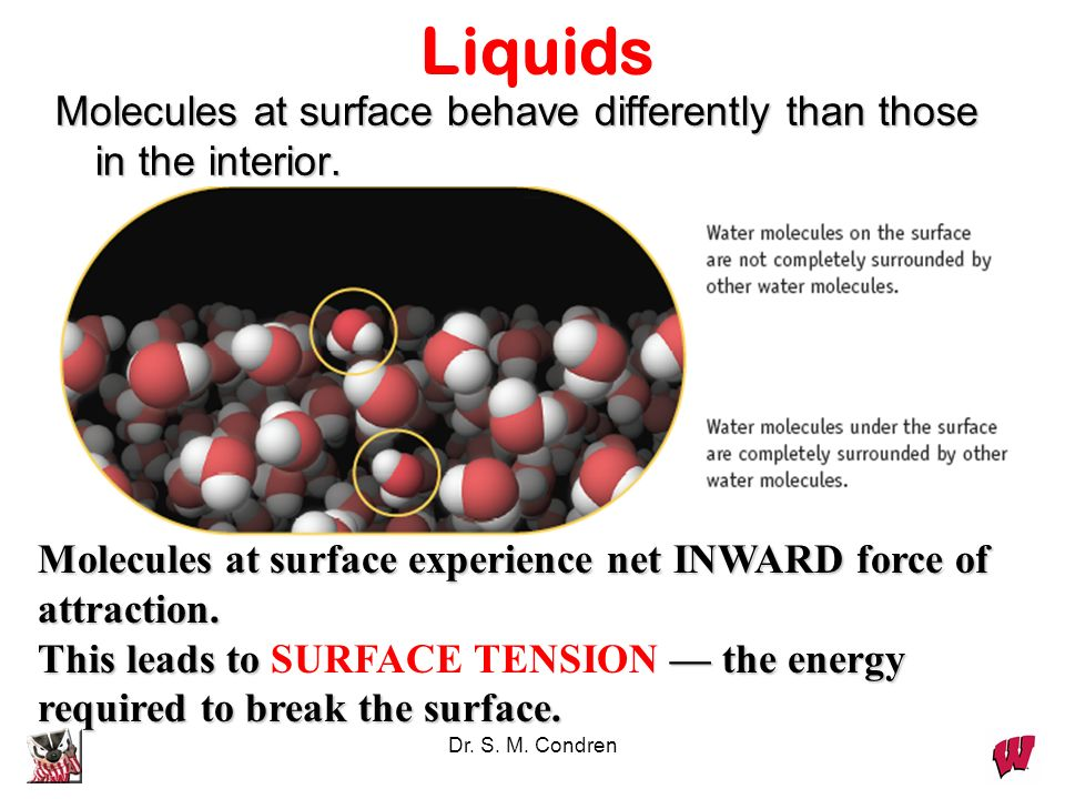 Dr. S. M. Condren Liquids Molecules at surface behave differently than those in the interior. Molecules at surface experience net INWARD force of attr