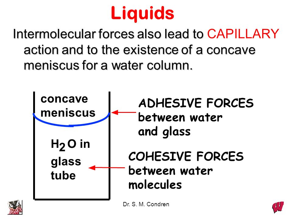 Dr. S. M. Condren Liquids Intermolecular forces also lead to action and to the existence of a concave meniscus for a water column. Intermolecular forc