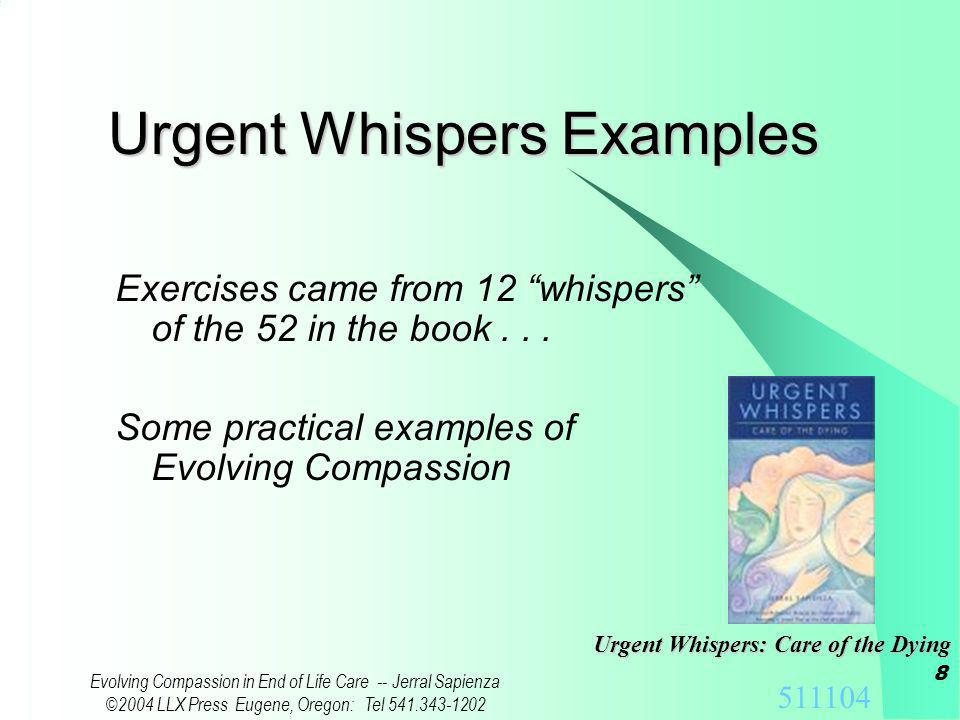 511104 Evolving Compassion in End of Life Care -- Jerral Sapienza ©2004 LLX Press Eugene, Oregon: Tel 541.343-1202 7 Discussion of Exercise Individual and Group responses to the allocation exercise… ~8 mins