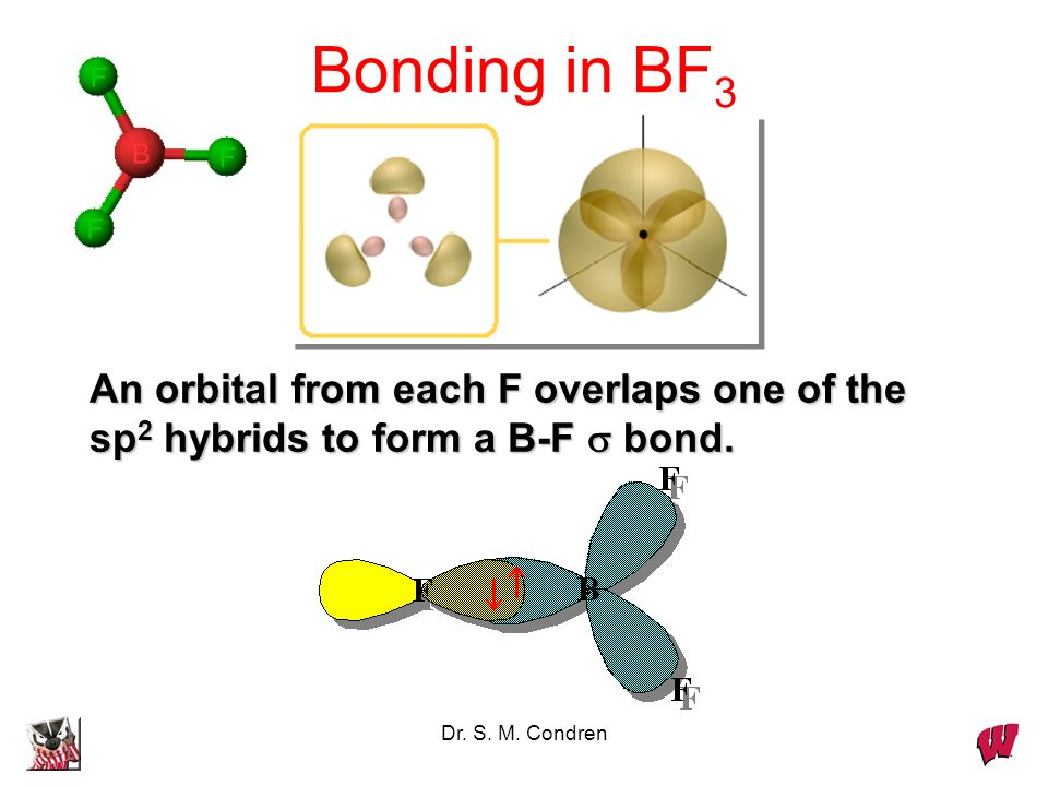 Dr. S. M. Condren An orbital from each F overlaps one of the sp 2 hybrids to form a B-F bond. Bonding in BF 3