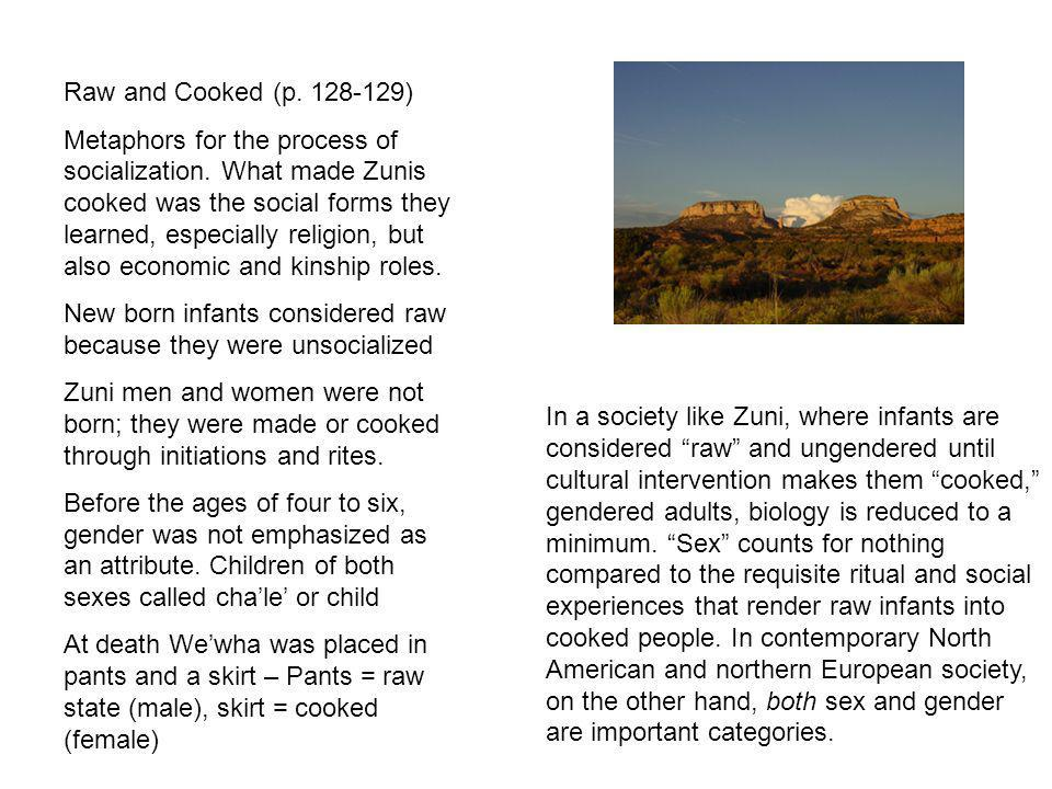 In a society like Zuni, where infants are considered raw and ungendered until cultural intervention makes them cooked, gendered adults, biology is red