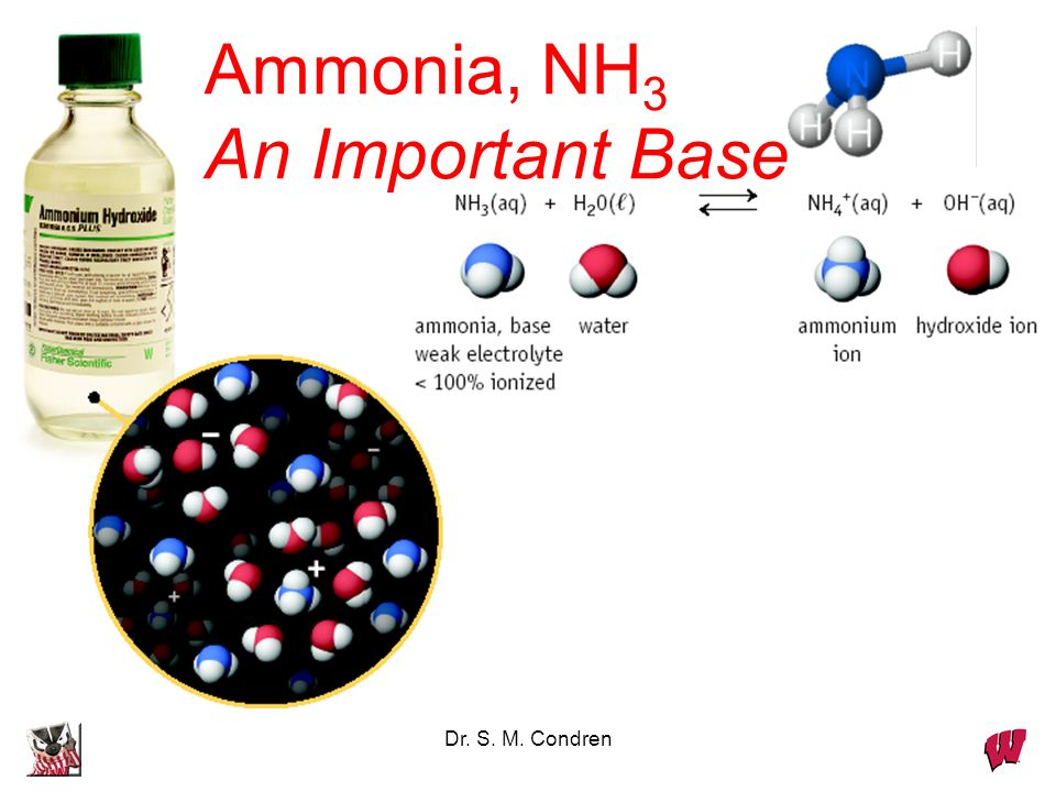 Dr. S. M. Condren Ammonia, NH 3 An Important Base