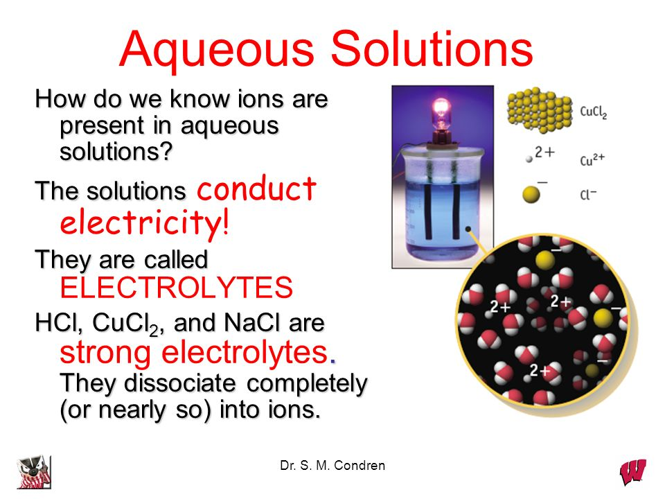 Dr. S. M. Condren How do we know ions are present in aqueous solutions.