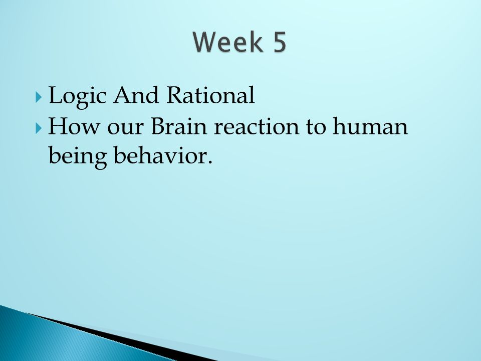 Logic And Rational How our Brain reaction to human being behavior.