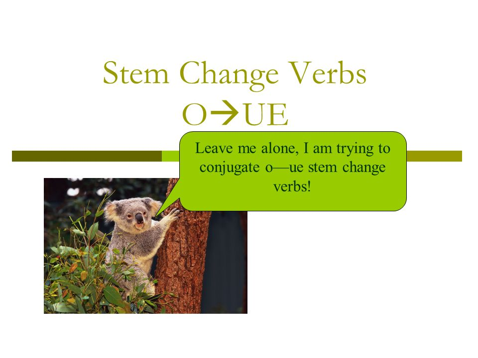 Stem Change Verbs O UE Leave me alone, I am trying to conjugate oue stem change verbs!