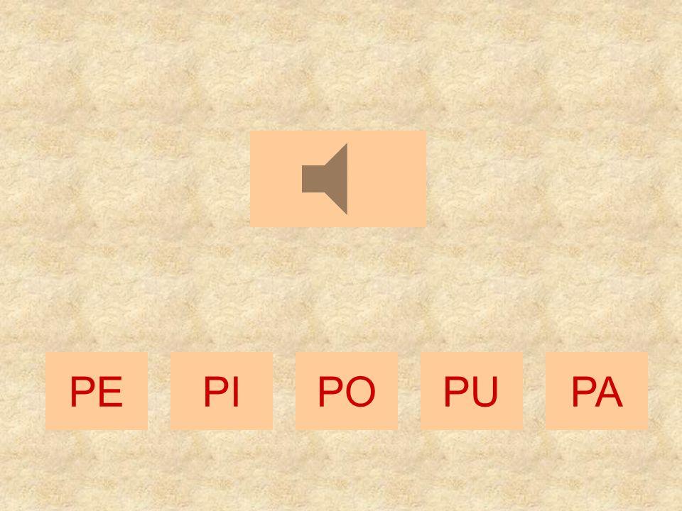POPEPIPAPU
