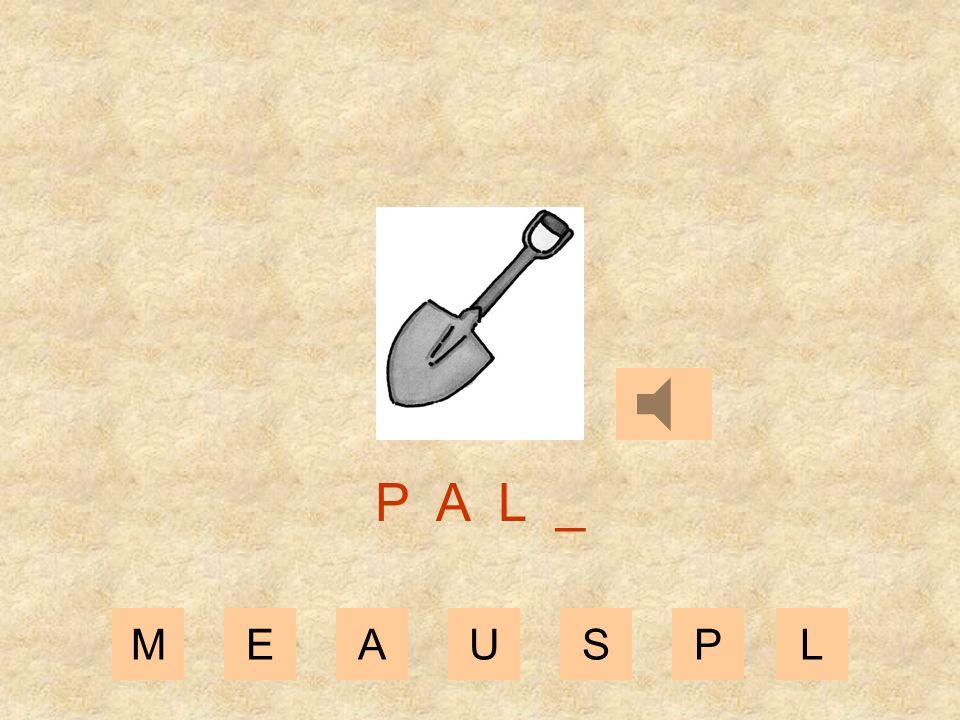 MEAUSPL P A _ _