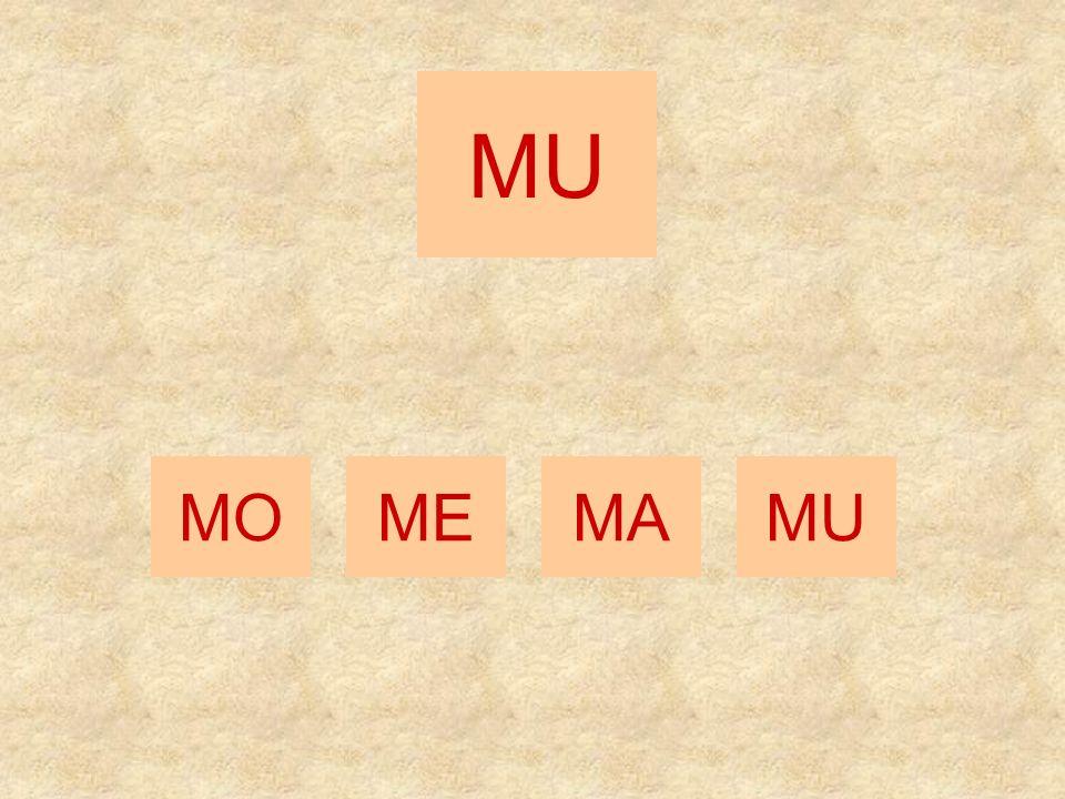 MI MEMAMO