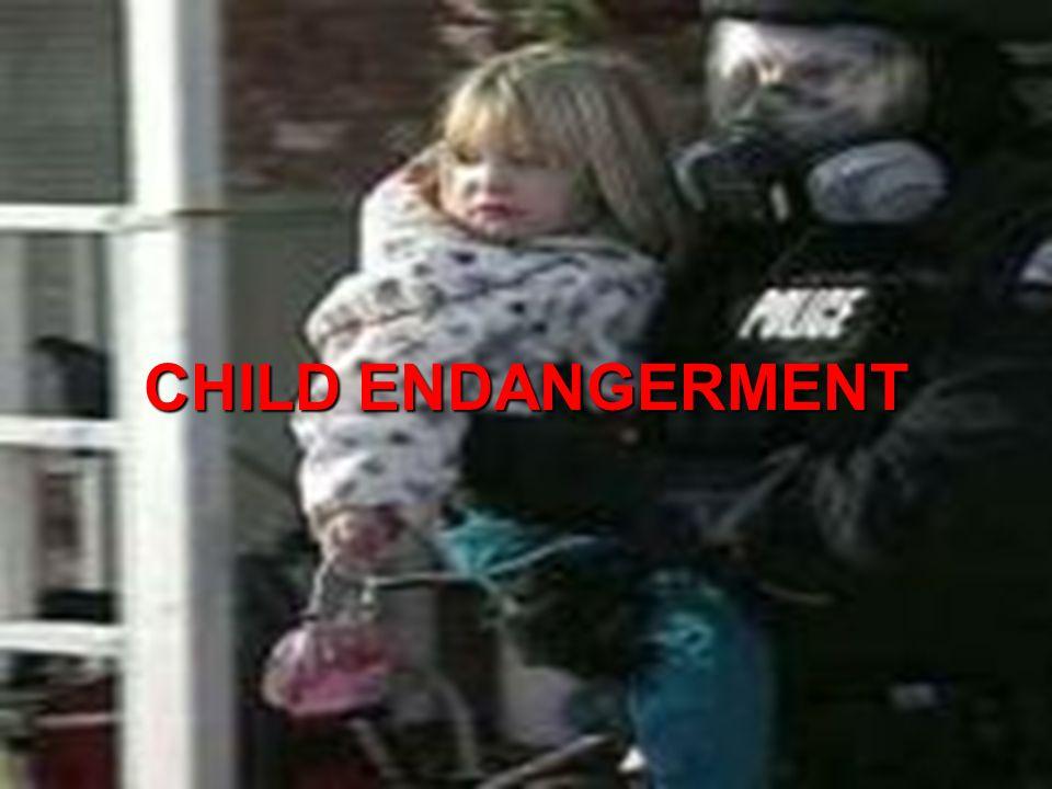 Ohio Resource Network www.ebasedprevention.org 52 CHILD ENDANGERMENT
