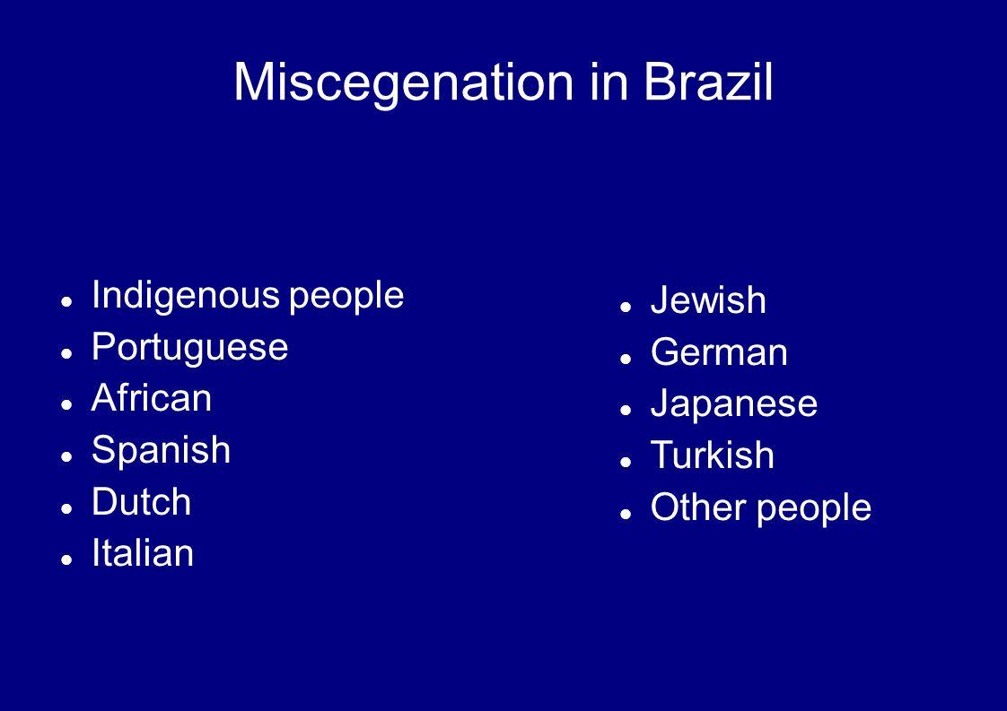 Indigenous people Portuguese African Spanish Dutch Italian Miscegenation in Brazil Jewish German Japanese Turkish Other people