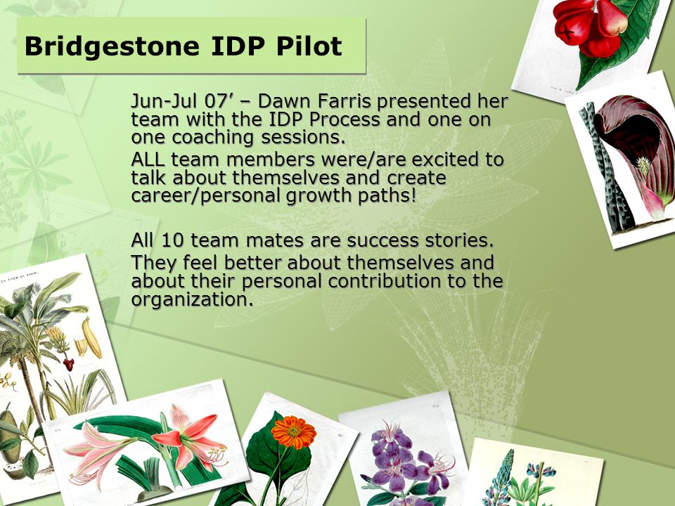 Jun-Jul 07 – Dawn Farris presented her team with the IDP Process and one on one coaching sessions. ALL team members were/are excited to talk about the