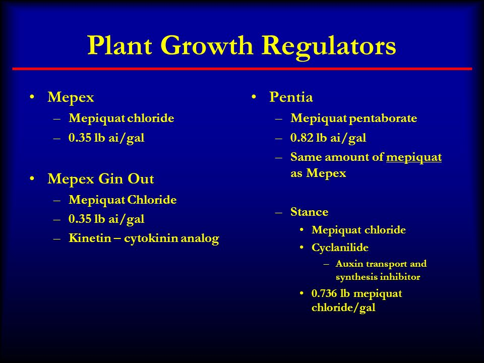 Plant Growth Regulators Mepex –Mepiquat chloride –0.35 lb ai/gal Mepex Gin Out –Mepiquat Chloride –0.35 lb ai/gal –Kinetin – cytokinin analog Pentia –