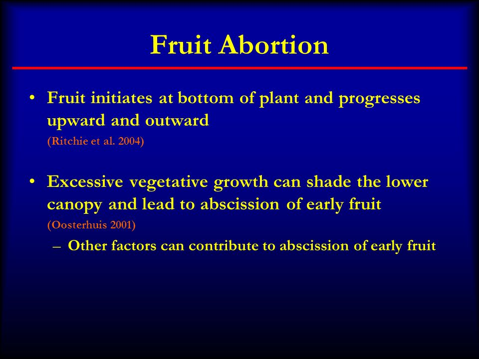 Fruit Abortion Fruit initiates at bottom of plant and progresses upward and outward (Ritchie et al. 2004) Excessive vegetative growth can shade the lo