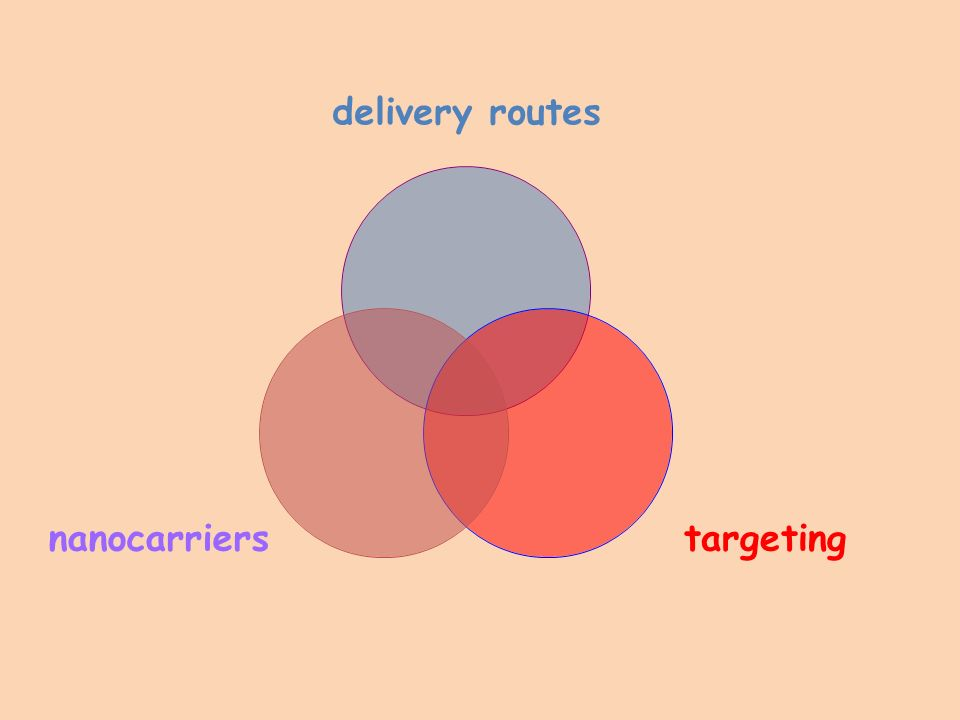 delivery routes targetingnanocarriers