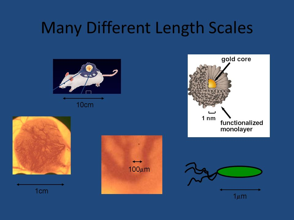 Many Different Length Scales 10cm 1cm 100 m 1 m