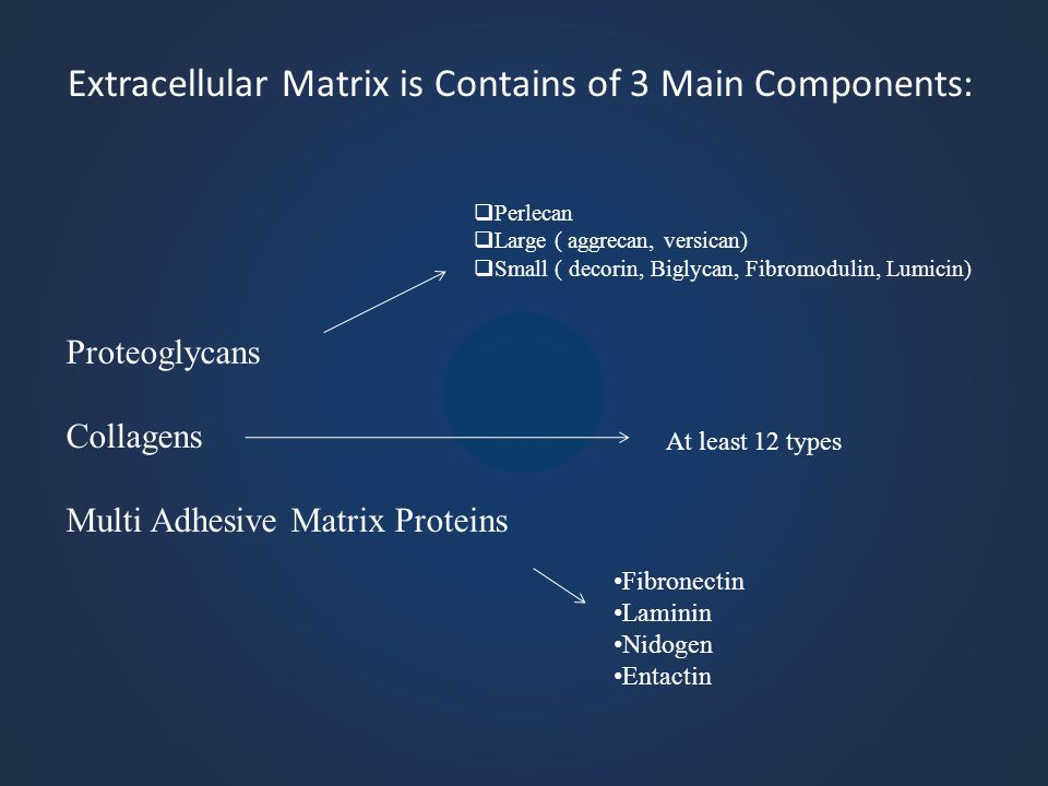 Extracellular Matrix is Contains of 3 Main Components: Proteoglycans Collagens Multi Adhesive Matrix Proteins Perlecan Large ( aggrecan, versican) Sma