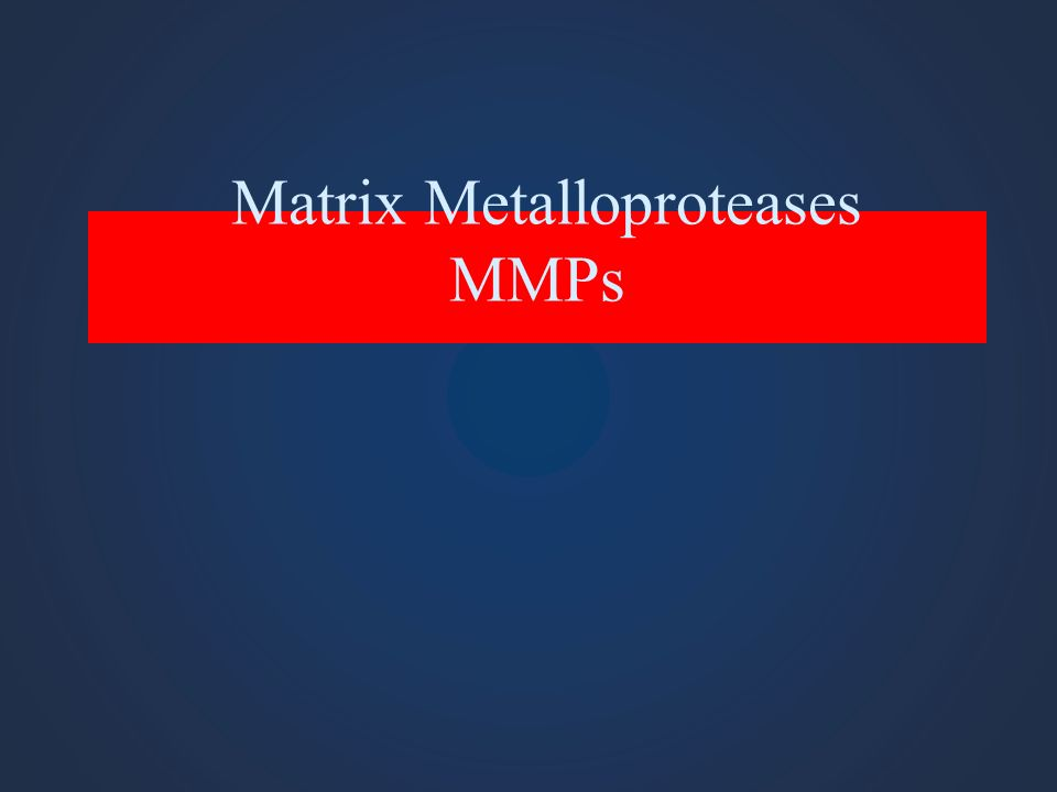 Matrix Metalloproteases MMPs