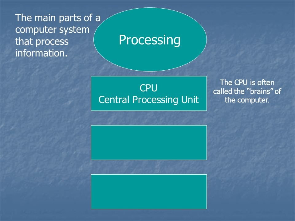 Processing The main parts of a computer system that process information. CPU Central Processing Unit The CPU is often called the brains of the compute