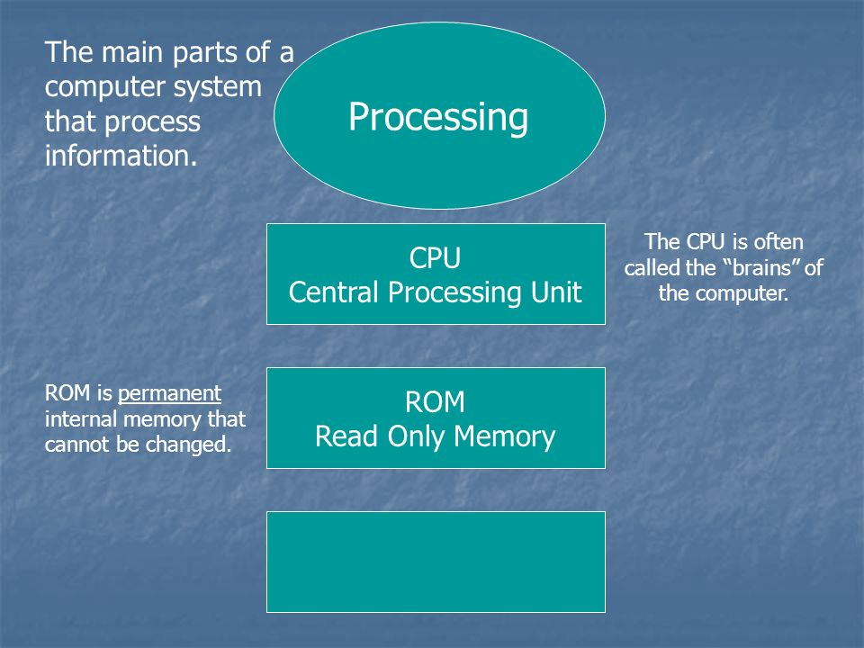 Processing The main parts of a computer system that process information. CPU Central Processing Unit ROM Read Only Memory The CPU is often called the