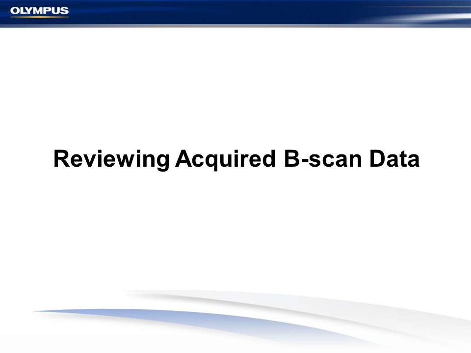 Reviewing Acquired B-scan Data