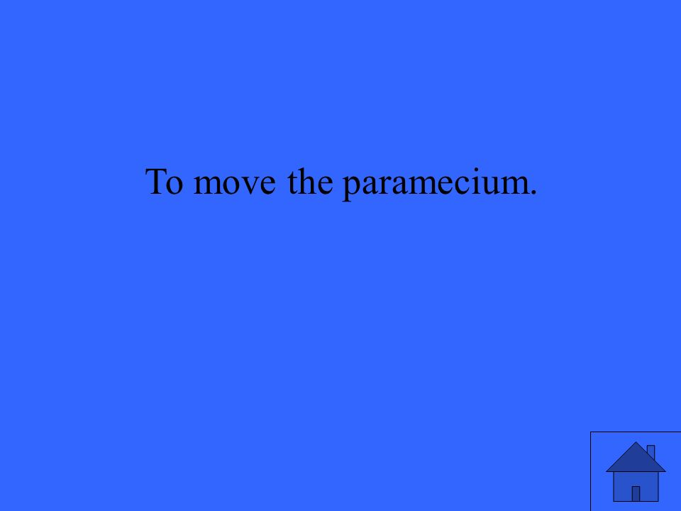 To move the paramecium.