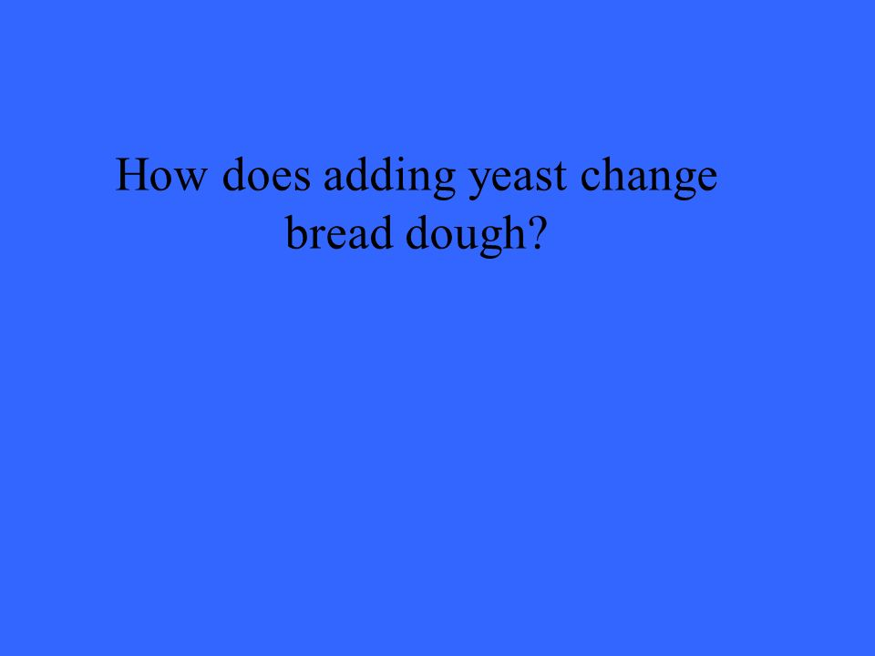 How does adding yeast change bread dough