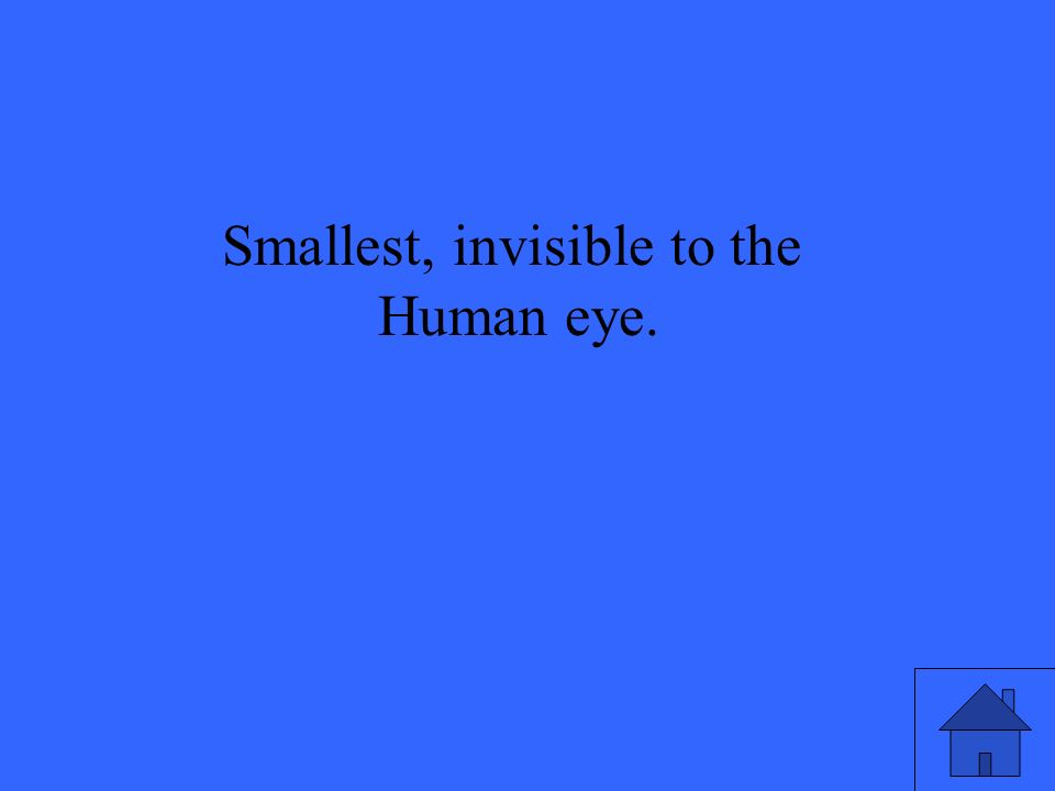 Smallest, invisible to the Human eye.