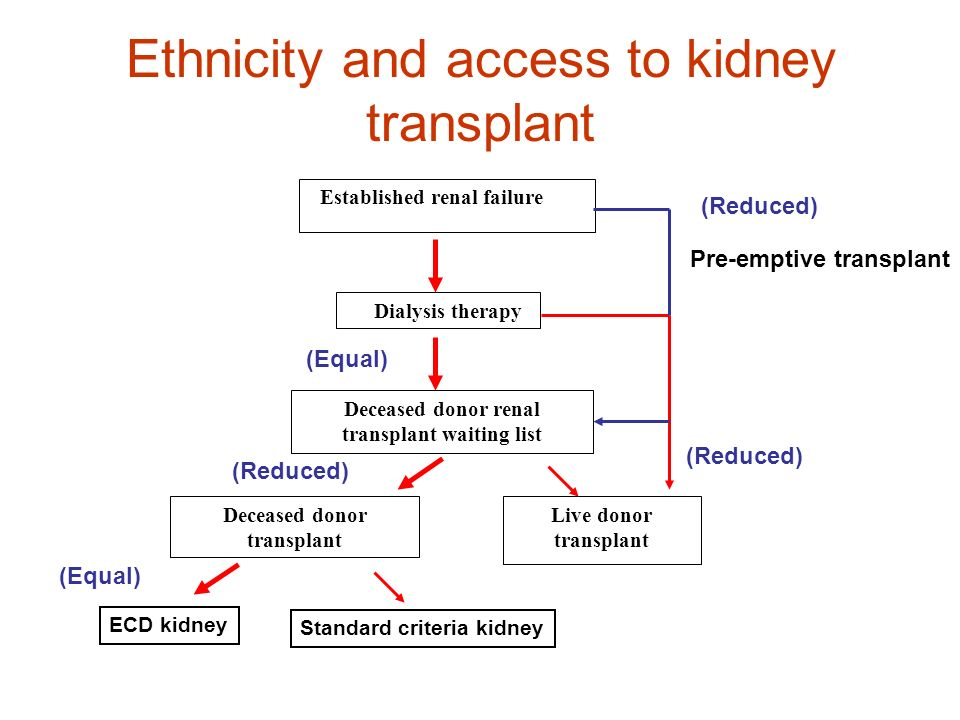 Ethnicity and access to kidney transplant Established renal failure Dialysis therapy Deceased donor renal transplant waiting list Deceased donor trans