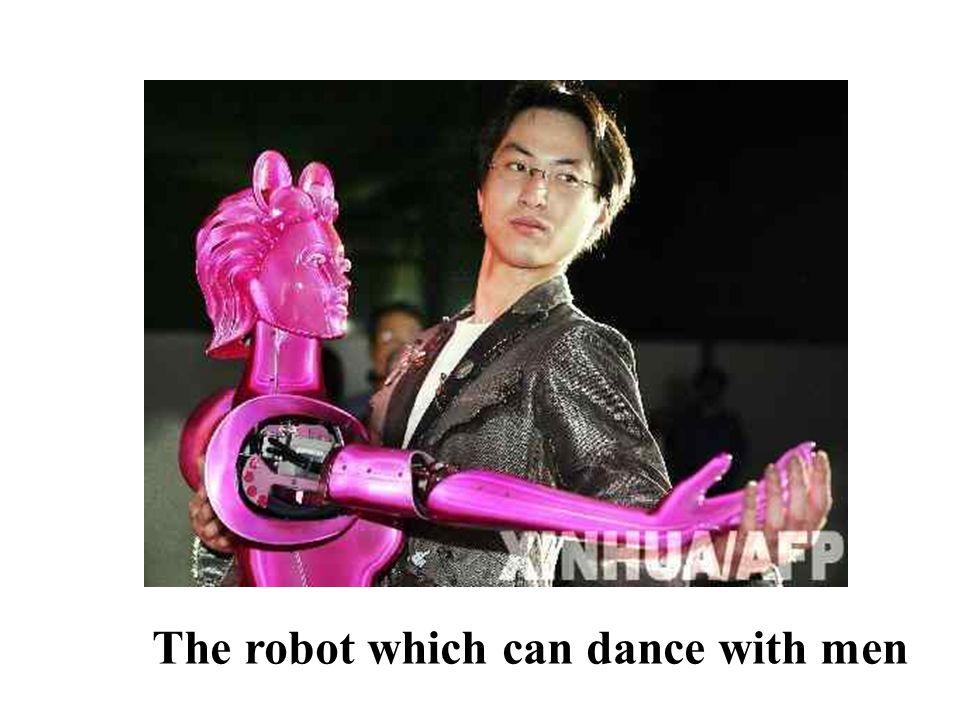 Entertainment robots