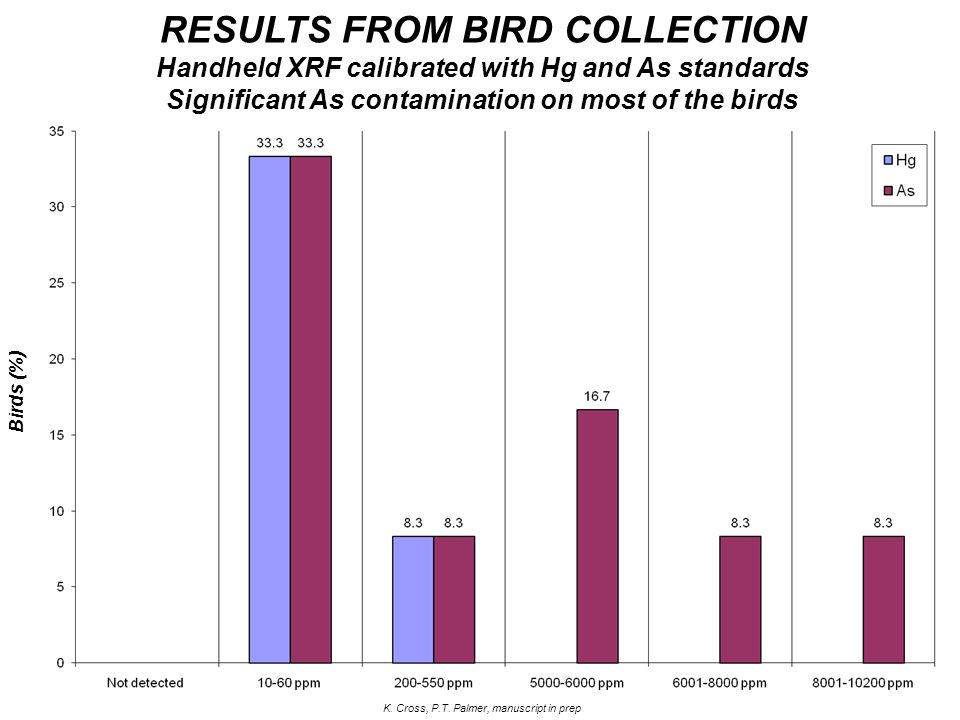 Birds (%) RESULTS FROM BIRD COLLECTION Handheld XRF calibrated with Hg and As standards Significant As contamination on most of the birds K. Cross, P.