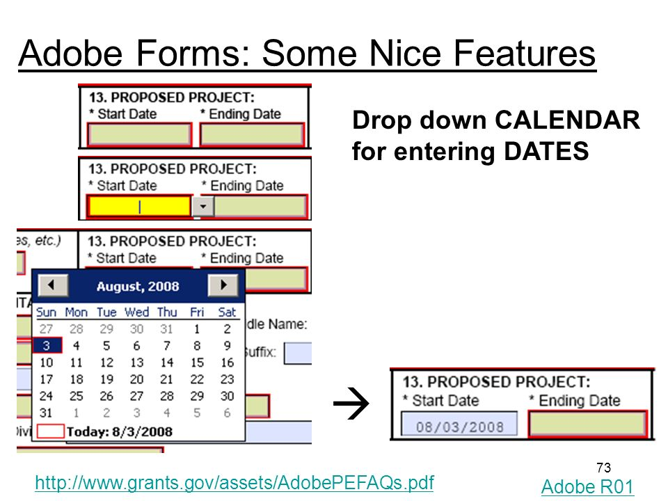 73 Adobe Forms: Some Nice Features Drop down CALENDAR for entering DATES http://www.grants.gov/assets/AdobePEFAQs.pdf Adobe R01
