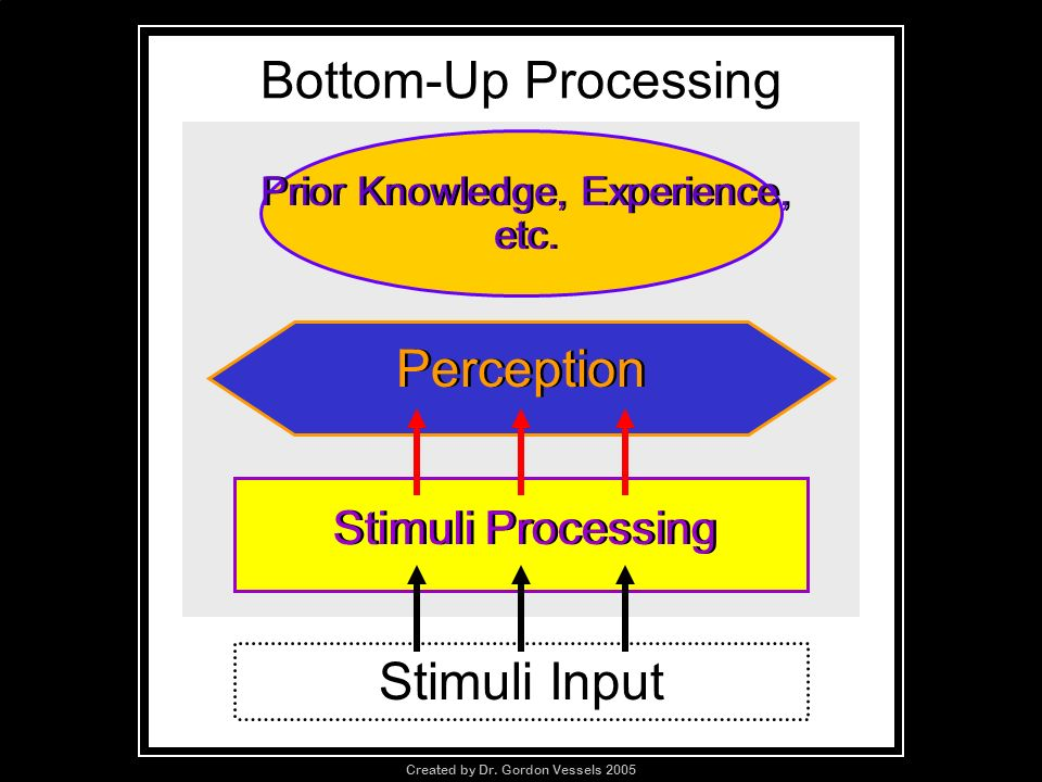 Bottom-Up Processing Prior Knowledge, Experience, etc. Stimuli Processing Perception Stimuli Input Created by Dr. Gordon Vessels 2005