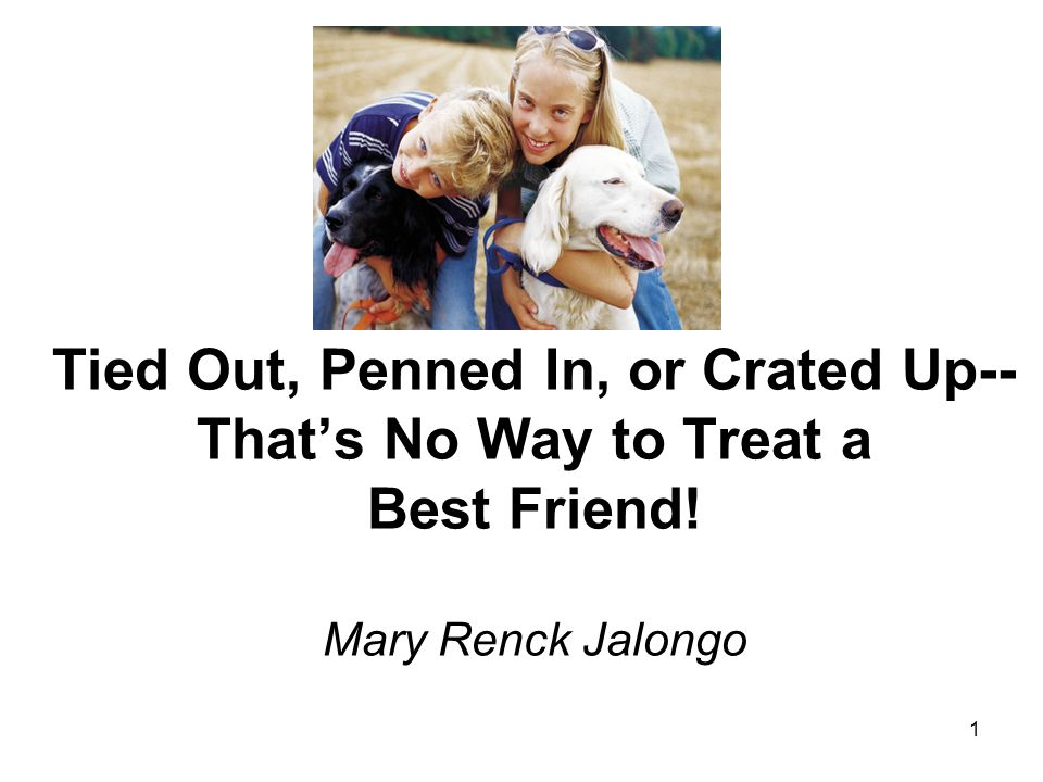 1 Tied Out, Penned In, or Crated Up-- Thats No Way to Treat a Best Friend! Mary Renck Jalongo