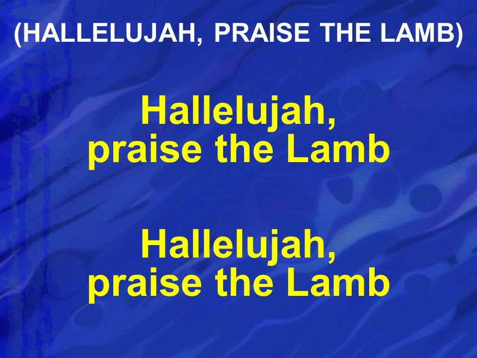 Hallelujah, praise the Lamb (HALLELUJAH, PRAISE THE LAMB)