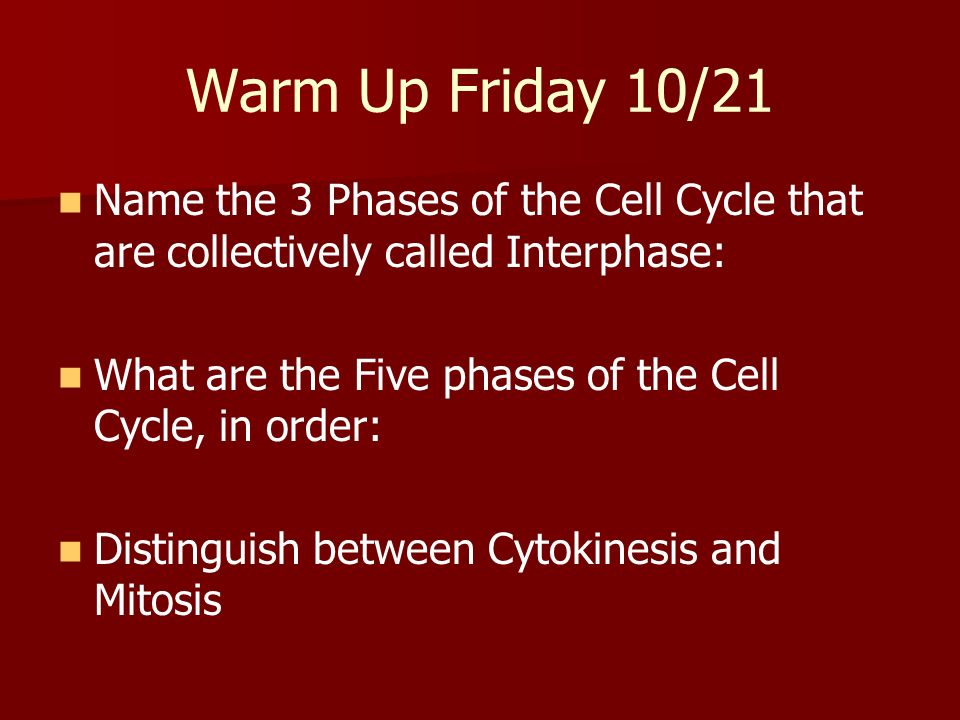 Warm Up Friday 10/21 Name the 3 Phases of the Cell Cycle that are collectively called Interphase: What are the Five phases of the Cell Cycle, in order